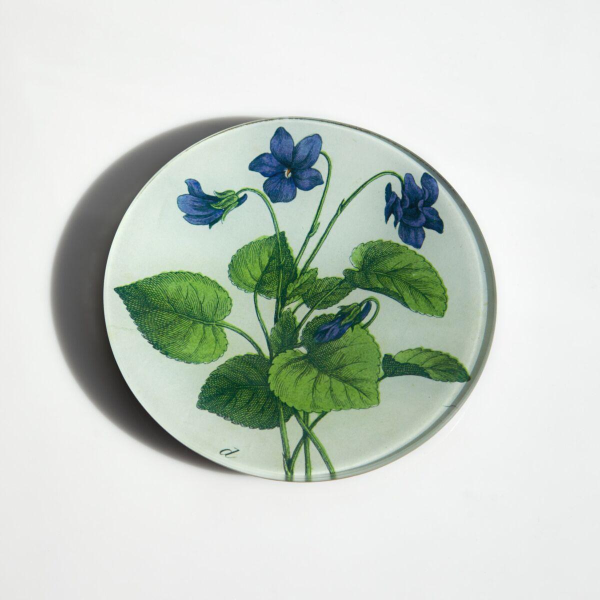 Violets Plate image