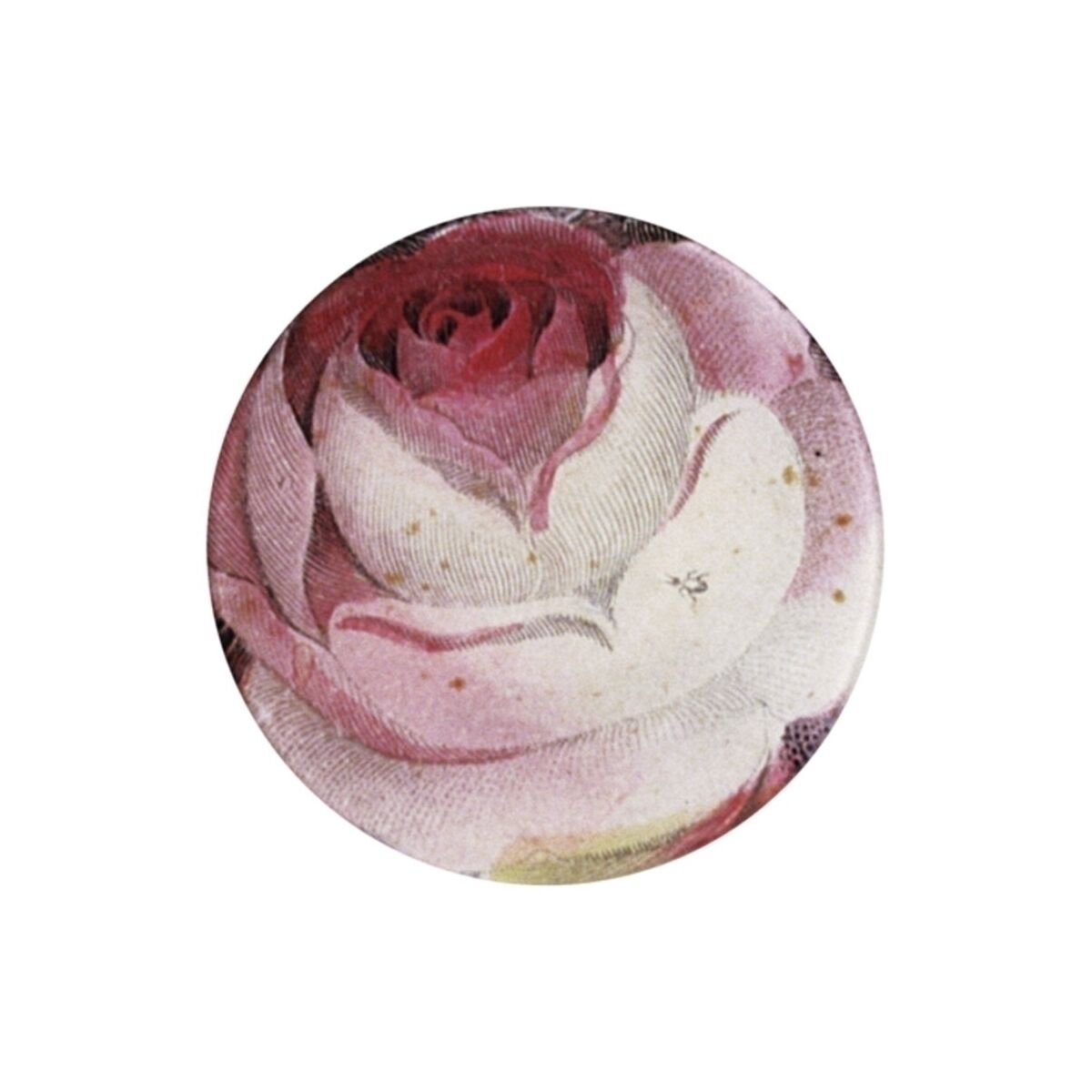 Rose with Ant Plate