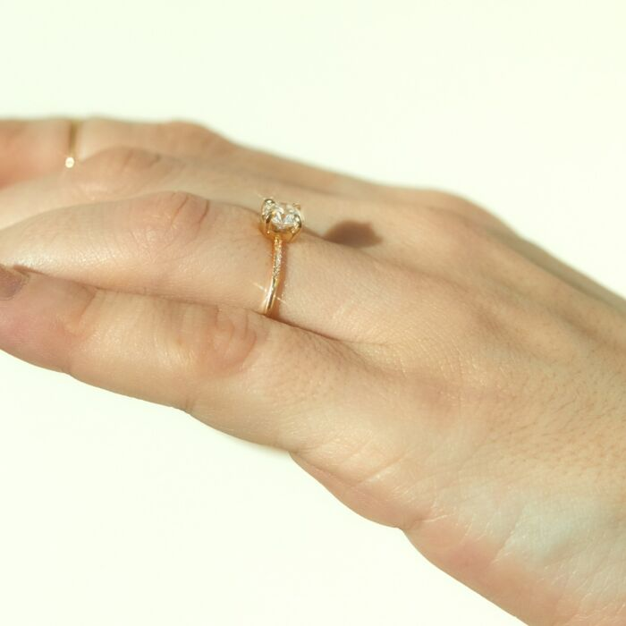 The Swan Solitaire, Supreme image