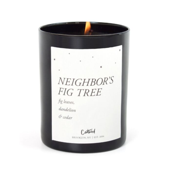 Neighbor's Fig Tree Candle