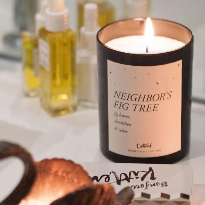 Neighbor's Fig Tree Candle image