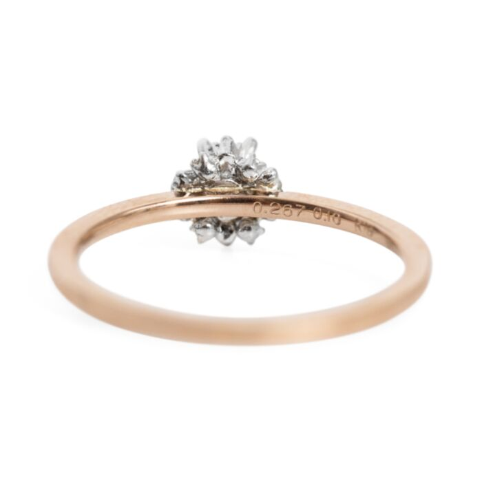 Japanese Apricot Ring Supreme image