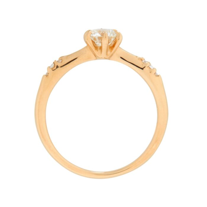 Ilona Ring, Diamond image