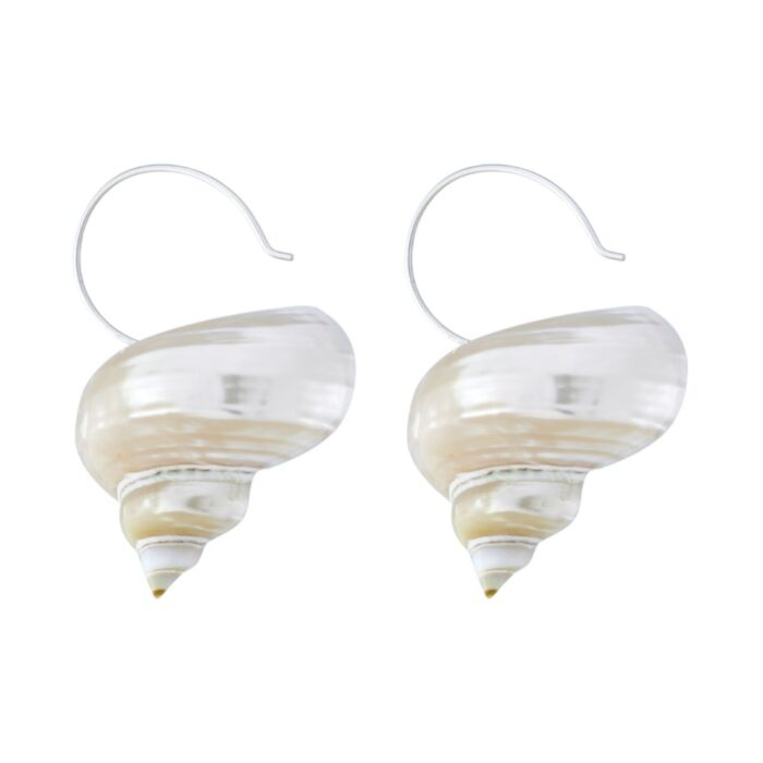 Turbo Shell Earrings image