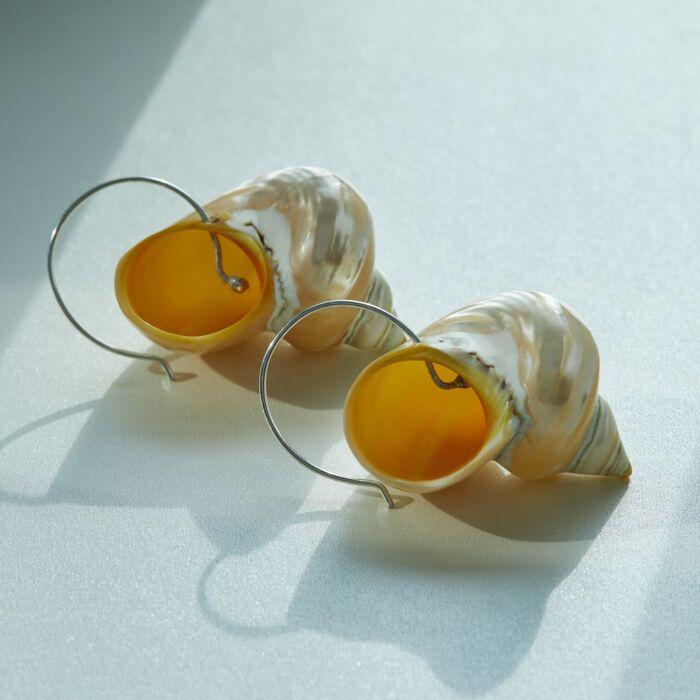 Turbo Shell Earrings image