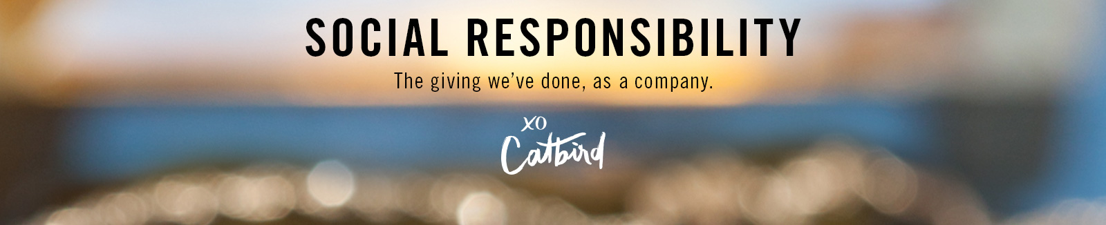 Catbird Foundation