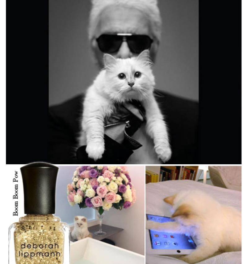 Famous Lovers: Choupette and Karl Lagerfeld.